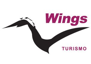 Wings Turismo